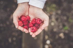 hand-berry-holding (1)